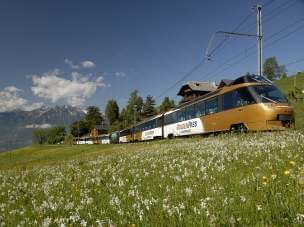 Golden Pass Express